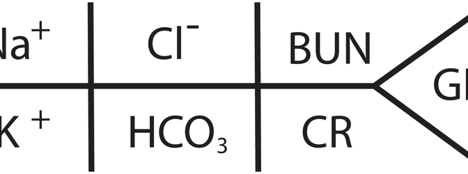 Electrolyte diagram